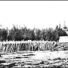 Moulin à scie et à préparer le bois de pulpe. Immense lot de bois destiné à être coupé et écorsé sur la ferme St-Georges.