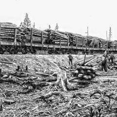 Train de bois vers Port-Menier