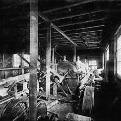 Écorsage du bois de pulpe (1908)