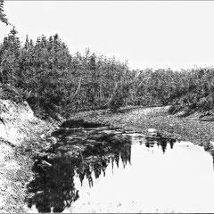 Embouchure de la rivière Bec-Scie (1908)