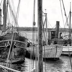 Le SS Savoy et l'Alpha au quai de baie Ellis, 1900