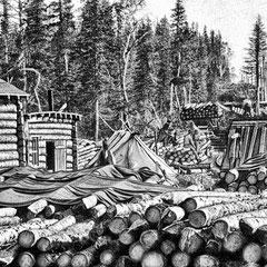 Exploitation forestière, 1910