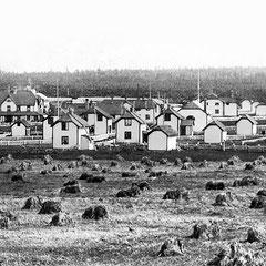 Baie Ste-Claire, 1901, la moisson