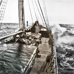 Le bateau à vapeur, S.S. Savoy, le 26 septembre 1901, acheté neuf des chantiers de Glasgow en Angleterre pour faire la navette entre Québec et Anticosti.