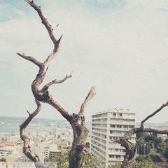 Marseille von oben, eine Perspektive vom nahegelegenen Hügel. Street Photography by Roland Grosch.