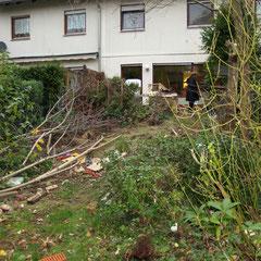 tuin met achterstallig onderhoud voor renovatie