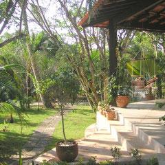 Jardim - Garten - garden