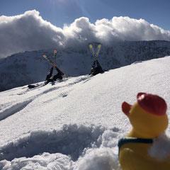 Andys Ente in 2500 Metern höhe