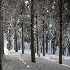 Winter in der Krinitzenstube und Thüringer Küche