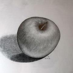 Apfelstudie, Bleistift, ca. DIN A4