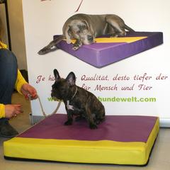 Orthopädische Hundebetten speziell für Hunde mit Arthrose und HD aber auch für alle gesunden Hunde zur Prophylaxe