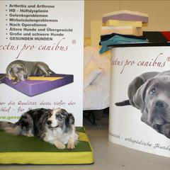 Orthopädische Hundebetten Lectus pro canibus von Gesunde Hundewelt unterstützen bei Rheuma, Athritis, Arthrose und HD