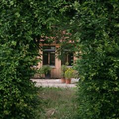 Bei Regen (kommt im Münsterland manchmal vor) im Gartenhaus