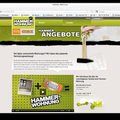 Portfolio Dorina Rundel - Grafikdesignerin: OBI Kampagnendesign online