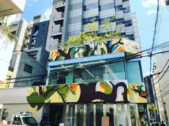 xola, shora, mural, street art, urban art, graffiti, chronicle, tokyo, omotesando