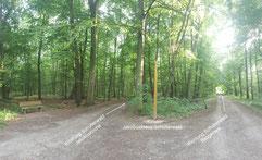 Pilgerkreuz in Schutterwald