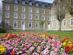 Les tulipes de la Maison d'Accueil pour groupes