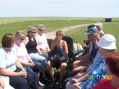 Mit dem Wagen zur Hallig Südfall, Sommer 2010