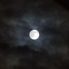 タンポポのベランダから見たお月様♪(へへ、これ、イメージフォトだよ)
