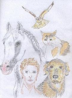 Mit Tieren sprechen - Leinwandbild
