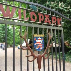 Tierpark Wildpark Alte Fasanerie Hanau