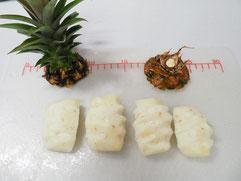 収穫したパイナップル その3 切断した写真