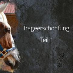 Trageerschöpfung Pferd