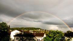 Regenbogen am Züriberg