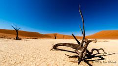Deadvlei, Landscape, Landschaft in Namibia