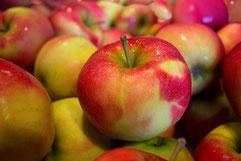 früchte äpfel orange zitrone