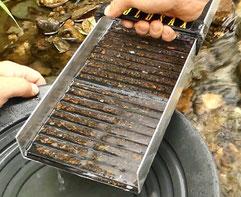 Goldwaschrinne vor dem Cleanout