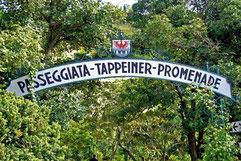 Tappeiner Promenade