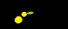 札幌で「かぞくと暮らしに心地よい、アロマテラピーとタッチング」をご提案しているアトリエ柚子香のホームページのトップページにもどります