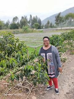 Kaffee aus Ruanda Kaffeeprojekt Nova Coffee