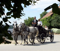 Kutschenfahrten auf speziellen Anlässen (hier Hochzeit)