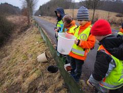 Kinder helfen den Kröten über die Straße