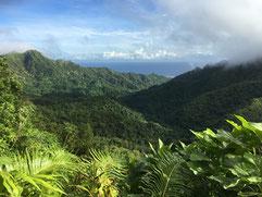 Te Rua Manga, The Needle, Rarotonga hiking, mountain climbing