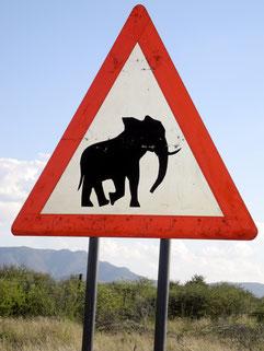 Elefant auf Strassenschild Vorfahrt beachten vor blauem Himmel - Kraft  © Bethel Fath