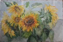 zonnebloemen(2) 40/60 ( aquarel )