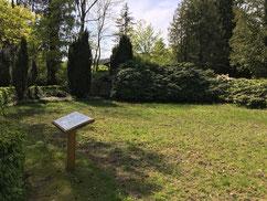 Auf dieser Fläche ruhen 89 KZ-Häftlinge eines KZ-Zuges, die während eines Bombenangriffes auf den Soltauer Bahnhof am 11. April 1945 ums Leben kamen oder auf ihrer anschließenden Flucht in Soltau erschossen wurden. Foto: L. Hellwinkel, 2020