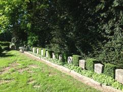 Grabreihe mit 20 sowjetischen Kriegsgefangenen aus den Stalag XB und Stalag XD sowie vier polnischen Zwangsarbeitern, die zwischen 1941 und 1945 auf Arbeitskommandos in Hittfeld und Klecken verstorben sind. Foto: L. Hellwinkel, 2019