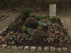 In einem Doppelgrab auf dem Friedhof von Betzendorf liegen zwei unbekannte sowjetische Kriegsgefangene. Todesort und Todesursache sind nicht bekannt. Foto: J. Effinger, 2019