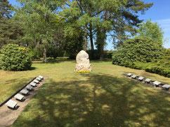 Auf dem ehemaligen Friedhof des Ausweichkrankenhauses Wintermoor befindet sich ein Gräberfeld für 156 KZ-Häftlinge, darunter Häftlinge aus dem KZ Buchenwald, die am 10. April 1945 am Bahnhof Wintermoor in einem Massengrab verscharrt wurden. Foto: L. Hellw