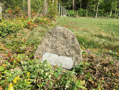 Grab des sowjetischen Kriegsgefangenen Jakow Trifonow (42618 XD). Er wurde am 27. Juli 1944 auf dem Arbeitskommando 1011 Hörpel wegen Widerstands erschossen. Foto: L. Hellwinkel, 2020