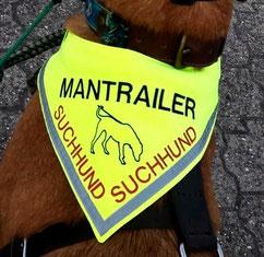 Mantrailer, Ausbildung, Azubi, Rettungshund, Suchhund