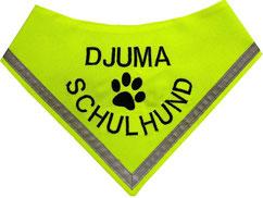 Halstuch für ausgebildete Schulbegleithunde