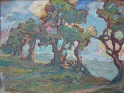 Paysage Montevidéo - Urugay 1915 26x34 huile sur toile André Aaron Blils