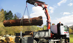 Unser Palfinger Kran hebt Baumstämme auf jedem GeländeBushaltestelle am Haken unseres Palfinger Ladekrans - Zimmerei Tobias Lutz, Ihr Spezialist für Kranarbeiten aller Art