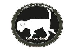 Homepage Sempre diritto
