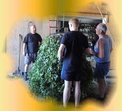 Die Schneidergesellen bei ihrer Arbeit
